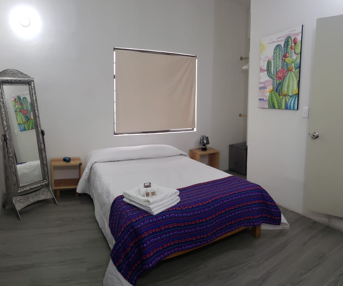 Hermila Tlalpan Suites Suite