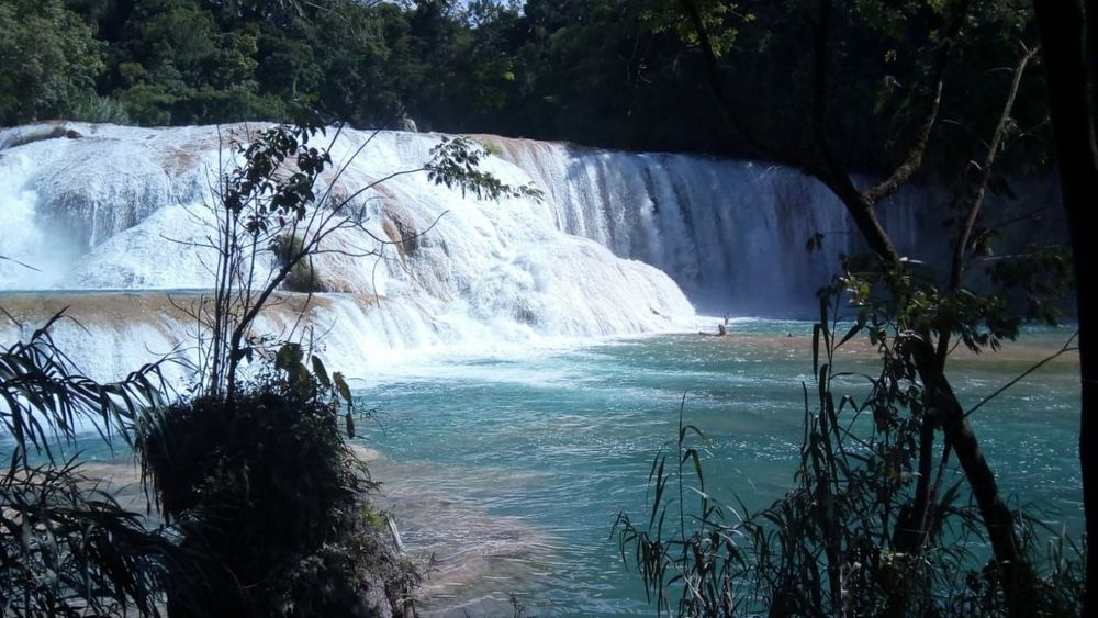 Tours CHIAPAS TRAVEL EXPERIENCE